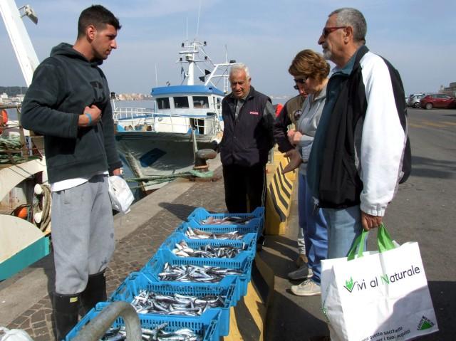 Im Hafen von Anzio